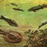 Подводный мир девонского периода