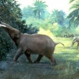 Tetralophodon