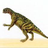 Psittacosaurus (Пситтакозавр)