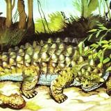 Pinacosaurus (Пинакозавр)