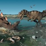 Allosaurus & Stegosaurus