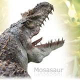 Mosasaurus (Мозазавр)