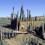 В пустыне Такла-Макан