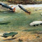 Рыбы девонского периода