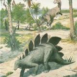 Stegosaurus и Ceratosaurus