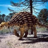 Аnkylosaurus (Анкилозавр)