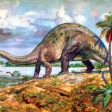 Brontosaurus (Бронтозавр)