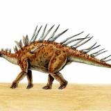 Kentrosaurus (Кентрозавр)