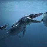 Tylosaurus (Тилозавр)