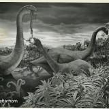 Бронтозавры