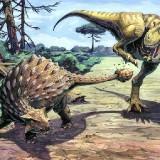 Ankylosaur & Tyrannosaurus Rex