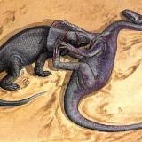 Рrotoceratops и velociraptor