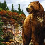 Arctodus simus (короткомордый медведь)