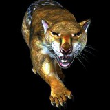 Thylacoleo carnifex (сумчатый лев)