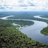 Зеленое море амазонии