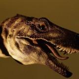 Hererrasaurus (Эрерразавр)
