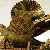 Dimetrodon и Edaphosaurus