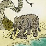 Карликовый мамонт