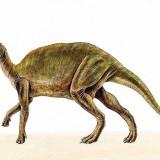 Lambeosaurus (Ламбеозавр)