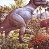 Tyrannosaurus и Palaeoscincus