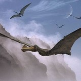Ornithocheirus (Орнитохейр)