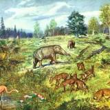 Миоценовый ландшафт
