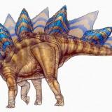 Stegosaurus (Стегозавр)