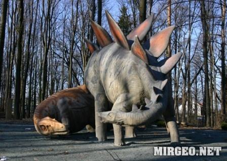 Stegosaurus и Allosaurus