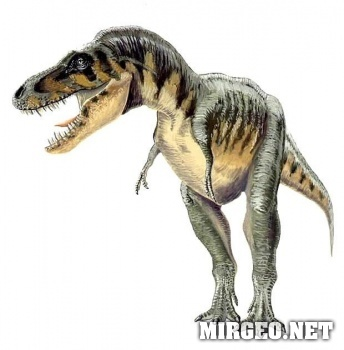 Tarbosaurus (Тарбозавр)