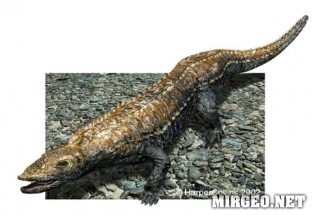 Stagonolepis