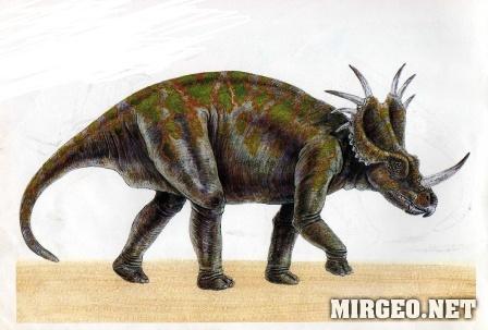Styracosaurus (Стиракозавр)