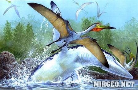 Pterodactylus (Птеродактиль)