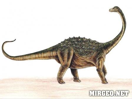 Saltasaurus (Сальтазавр)
