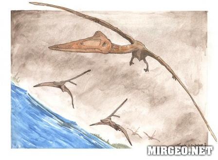 Pterodactyls (Птеродактиль)