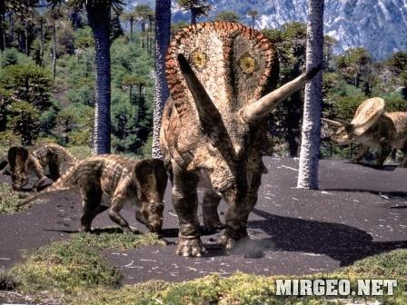 Torosaurus (Торозавр)