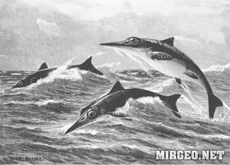 Ichthyosaurus (Ихтиозавр)