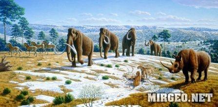 Мамонты, шерстистый носорог, лошади