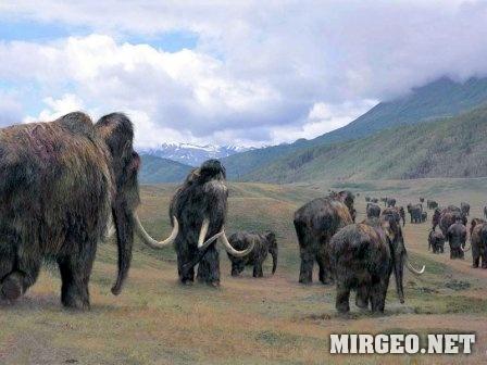 Стадо мамонтов