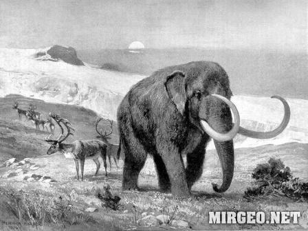 Mastodon (Мастодонт)