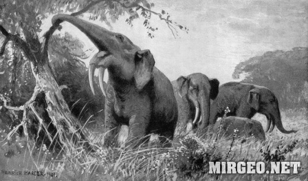 Dinotherium (Динотерий)