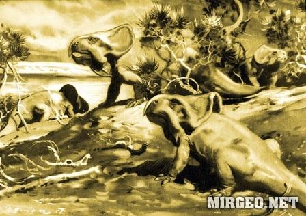 Protoceratops (Протоцератопс)