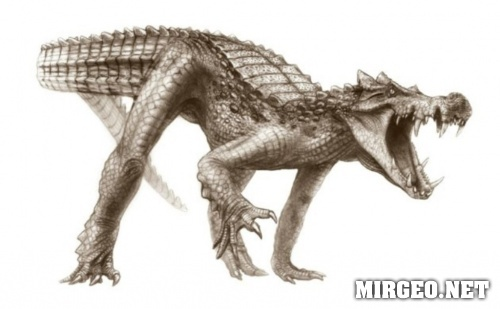 Kaprosuchus saharicus (Капрозух сахарикус)